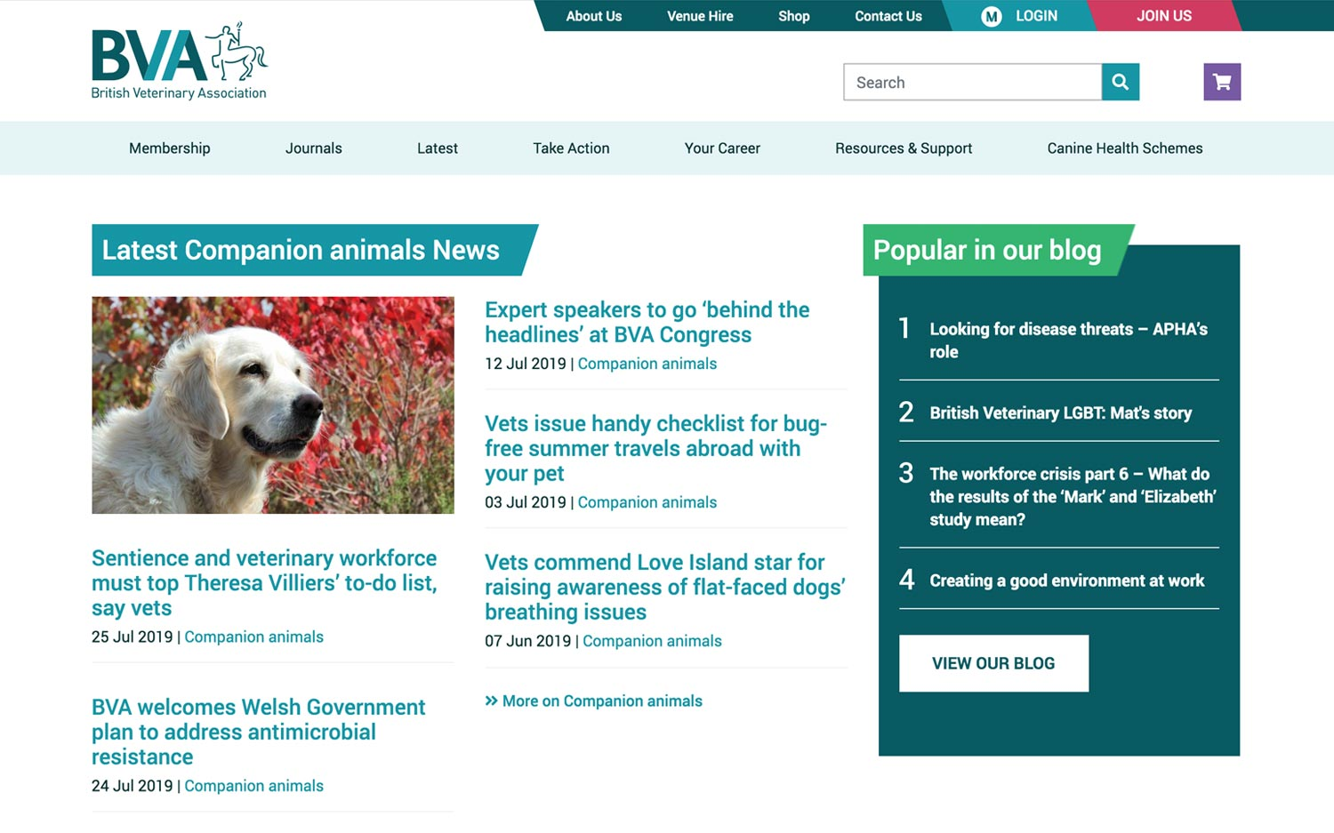 BVA website companion animal news